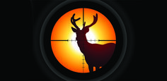 Hunting for Euphemisms: How We Trick Ourselves to Excuse Killing ...