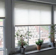 Plisse Online für Ihr Haus, warten Sie nicht und besuchen Sie: http://sunlux24.de/plissee~3