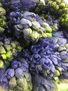 Hyacinth - available in lavender, blue, white, pink and yellow.  Vase life 4-7 days. www.mydaughtersgarden.com