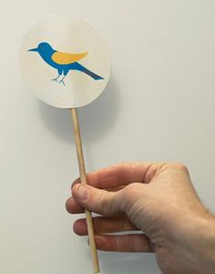 Click here to download a free pattern for this bird thaumatrope. Kids will love…