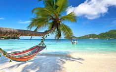 Download wallpapers tropical islands, beach, summer travel, summer, palm trees, boat