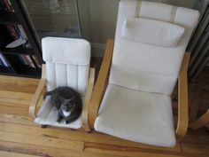 """And it even matches yours!!!"" 
