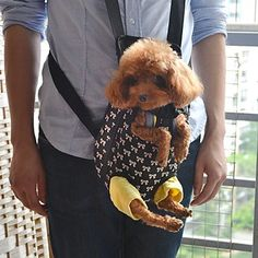 Lovely Bowknot Pattern Front Backpack Bag Pet Carrier for Dogs (S-XL) - http://www.thepuppy.org/lovely-bowknot-pattern-front-backpack-bag-pet-carrier-for-dogs-s-xl/