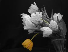 nice use of selective color