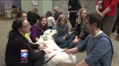 Pet Partners Community Partner Mo-Kan Pet Partners visited Park University in Parkville, Missouri to de-stress students during finals week.