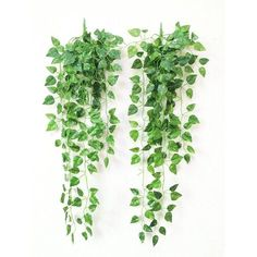 Yatim 90 CM Money Ivy Vine Artificial Plants Greeny Chain Wall Hanging Leaves For Home Room Garden Wedding Garland Outside Decoration Pack of 2 >>> Find out more about the great product at the image link. (This is an affiliate link) Artificial Plants And Trees, Artificial Plant Wall, Artificial Flower Arrangements, Fake Plants, Indoor Plants, Wall Hanging Plants Indoor, Artificial Flowers Outdoors, Balcony Plants, Silk Plants