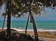 Caribbean Sea in Costa Rica - Sherry Dooley