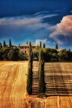 Tuscany, Italy. Looks like the Villa that was in the movie Gladiator, the one where Russell Crowe's character, Maximus, was trying to get home to his family. It's a beautiful place.