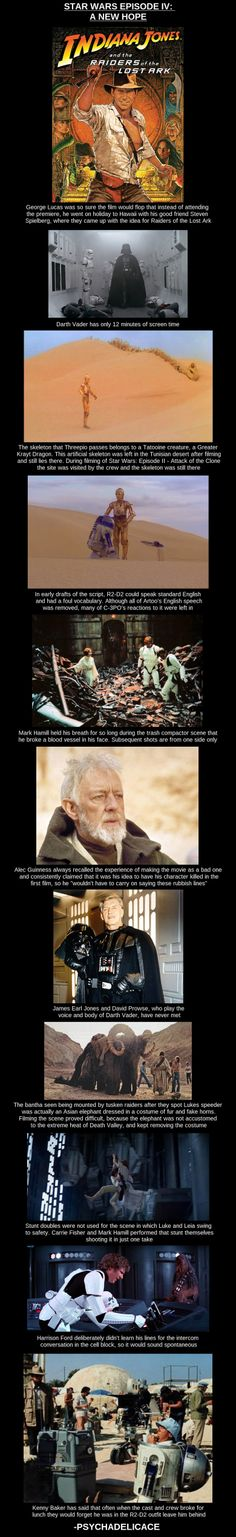 A New Hope  // funny pictures - funny photos - funny images - funny pics - funny quotes - #lol #humor #funnypictures