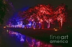 Illumina Light Show At Schloss Dyck Germany © David Davies