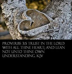 Proverbs 3:5 KJV  Trust in the Lord with all your heart; and lean not unto thine own understanding.
