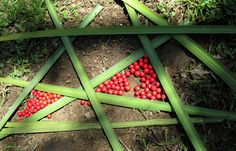 """Land Art; """"Angular Abstraction"""".  Created by 2nd Graders for YES Fundraiser Project by cproppe, via Flickr"""