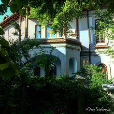 Romanian style house - photo by Dana Stefanescu