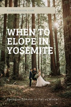 Don't get photobombed. You can have an intimate Yosemite elopement if you follow my tips and tricks on when to elope in Yosemite and avoid the crowds. Big Sur California, California Wedding, Yosemite Waterfalls, Elopement Inspiration, Elopement Ideas, Yosemite Valley, Adventure Photography, Best Day Ever, Months In A Year