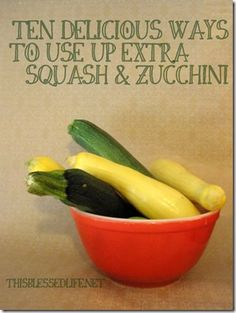10 Delicious Ways to Use Up Extra Squash And Zucchini!   #zucchini #squash