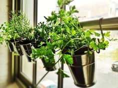 Ikea Kitchen Hacks | Hanging Herb Planters | The Ikea Fintorp utensil holder has to be one of the most versatile storage solutions from the Swedish retailer. In combination with a shower or curtain rod and Grundtal S-hooks, you can create your very own window herb garden. Use as many or as few utensil holders as you need to accommodate your herb collection!