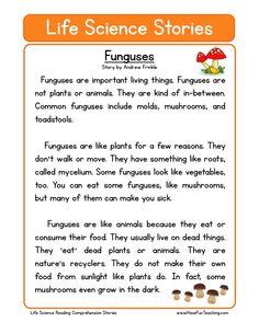 This Reading Comprehension Worksheet - Funguses is for teaching reading comprehension. Use this reading comprehension story to teach reading comprehension.