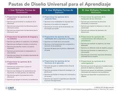 Pautas de diseño universal para el aprendizaje en las que se trata de llegar a todos los campos de aprendizaje del alumno.