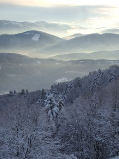Les Vosges Belle France, Ardennes, Destination Voyage, The Mountains Are Calling, Winter Trees, Jolie Photo, The Good Place, Sunrise, Places To Visit