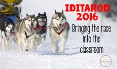 Iditarod 2016 - Bringing the Race into the Classroom by Sweet Integrations