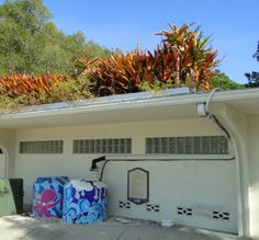 Eco-friendly touches are evident in Sarasota, Florida's Bayfront Park. Rain barrels are painted in tropical colors and designs and catch green roof run-off. EV charging stations are nearby. http://getgreenbewell.com/2014/02/07/green-design-at-sarasotas-bayfront-park/