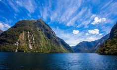 Every shade of blue and green there is. Doubtful Sound has it all! Natural Scenery, Shades Of Blue, New Zealand, Wildlife, Mountains, Green, Travel, Viajes, Traveling