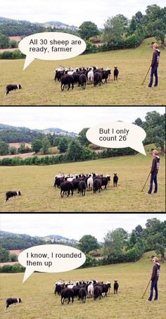 The ultimate farmer pun: