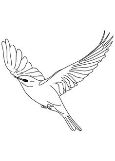 Canary Bird Floating In The Sky Coloring Pages : Best Place to Color Bird Coloring Pages, Coloring Pages For Kids, Coloring Sheets, Canary Birds, Birds In The Sky, Online Coloring, To Color, Beautiful Words, Image