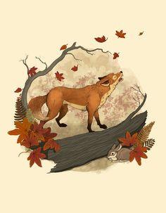 Fox, rabbit