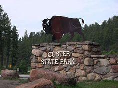 Custer State Park South Dakota   Custer State Park - South Dakota