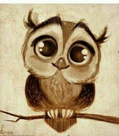 Cuteee owl drawing