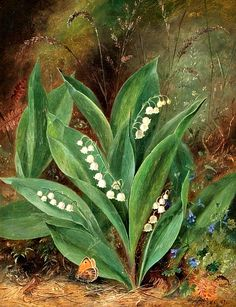 <3<3<3 Lily-Of-The-Valley <3<3<3