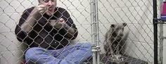 Entra dentro de una jaula con un pitbull maltratado. Cuando vi la razón me quedé impresionando #viral