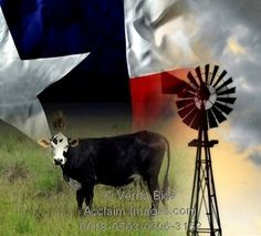 A Texas windmill, Longhorn and a State Flag, all symbols of Texas.