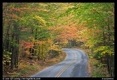 Fall foliage and road near entrance of Baxter State Park. Baxter State Park, Maine, USA (color)