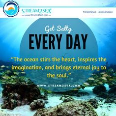 GET #SALTY EVERYDAY!! ... #Stream2Sea #MarineSafety #EcoConscious #Biodegradable #SkinCare #NaturalProducts #NaturalSunscreen #NonToxic #BodyCare #scuba #ScubaGirls #ScubaDiving #UnderwaterLife #SeaLife #CoralReef #ReefProtection #ProtectWhatYouLove #GetInvolved #SaltLife #OceanLife #Surfing #MetmaidLife #Scuba #ScubaDiverLife #OceanPhotography #Photography #SUNDAYVIBES #SUNDAYFUNDAY #HAPPYSUNDAY