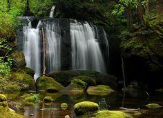 Whatcom Falls Park Bellingham   Whatcom Falls Park~Bellingham, WA #Destinations #places #water_falls # ... Falls Park, Places In America, Autumn Park, Water Waves, Washington State, Vancouver, Waterfall, Beautiful Places, Destinations