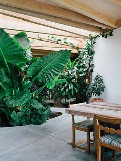 Luscious Artist Studio in Sonoma with Indoor Garden by Mork-Ulnes Architects | http://www.yellowtrace.com.au/mork-ulnes-architects-artist-studio-sonoma-indoor-garden/