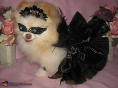 The Black Swan - Halloween Costume Contest via @costumeworks I THINK SHE'S GOING 2 A MASQUERADE PARTY
