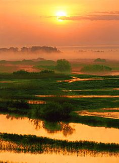 Sunset over Biebrza River, Poland Wonderful Places, Beautiful Places, Beautiful World, Beautiful Sunset, Nature Scenes, Nature Photos, Places To See, Travel Photos, Nature Photography
