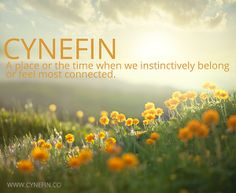 cynefin means Habitat lol Welsh Sayings, Welsh Words, Learn Welsh, Welsh English, Welsh Language, Nature Words, Jean Baptiste, French Quotes, Cymru