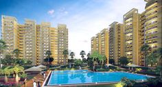 Noida has successfully emerged as one of the major hubs for buying homes over the past few years. Both Noida as well as Greater Noida, together with Noida Extension and Yamuna Expressway are the major areas that provide affordable and lucrative alternatives to the middle class living in the national capital.
