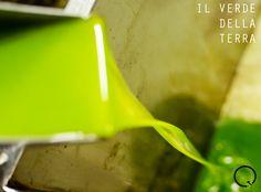 Prova i nostri deliziosi Oli - Discover our delicious Oils!  #qualytaly #extravirgin #oliveoil #puglia #apulia