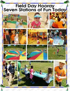 Field Day Easter Plants, Field Day, Insects, Kindergarten, School, Spring, Fun, Movie Posters, Movies