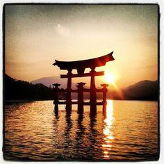 Voyage de noces, destination le Japon ! Destinations, Foodie Travel, Serenity, Zen, Skylights, Japan, Celestial, World, Passion