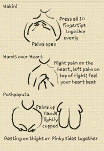 Beginning a Meditation Practice with Mudra's