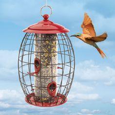 Small Bird Feeder  |  qcidirect.com