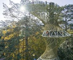 Bamboo observation tower close up. Best Picture For Bird Watching list For Your Taste You are lookin Rainforest Birds, Amazon Rainforest, Bamboo Architecture, Sustainable Architecture, Maquette Architecture, Futuristic Architecture, Residential Architecture, Contemporary Architecture, Landscape Plane