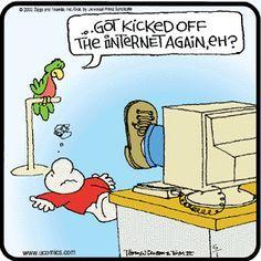Best Ziggy Cartoons   Kicked!