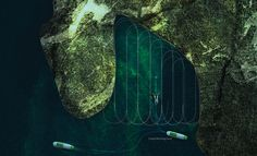 dubai design week algae harvester fredrik ausinsch